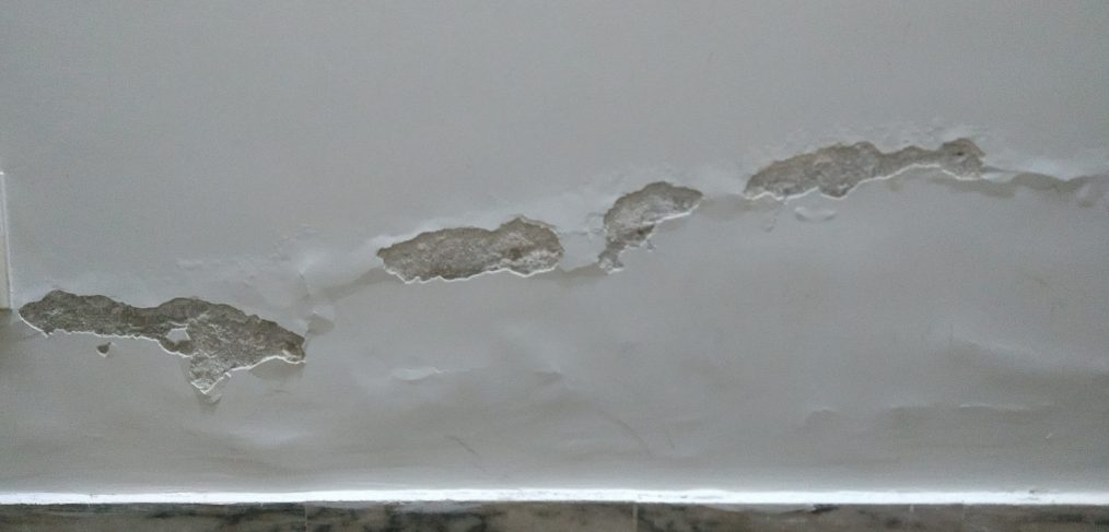 Selling a house with damp